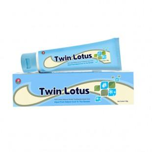 Twin Lotus Herbal Aqua Cool 40г Зубная паста